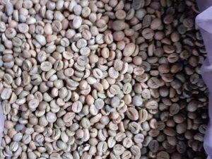 Cơ sở chế biến cà phê tỉnh Lâm Đồng