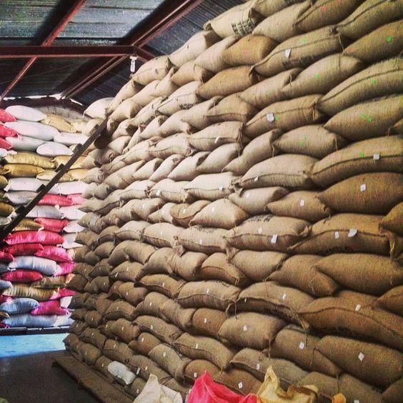 Kho cà phê xuất khẩu