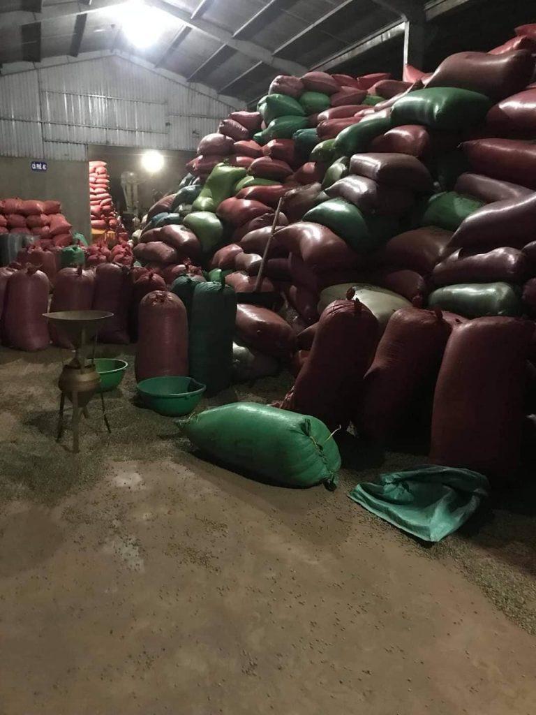 Xuất khẩu cà phê tỉnh Lâm Đồng