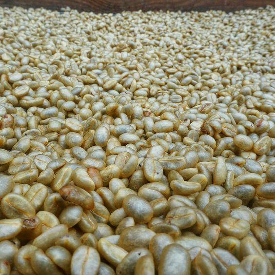 Coffee high quality