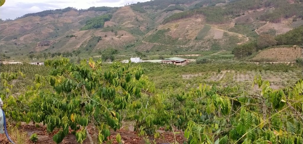 Farm in Lam Dong Province