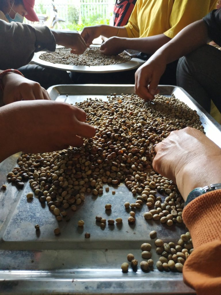 Hand made - remove black/broke beans